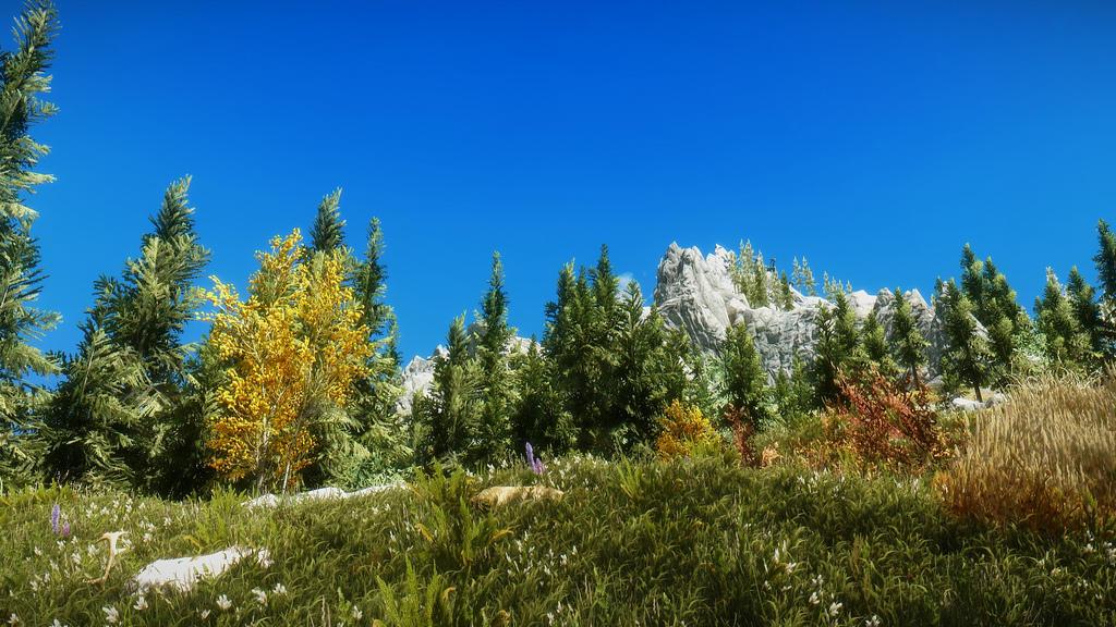 Skyrim Hills