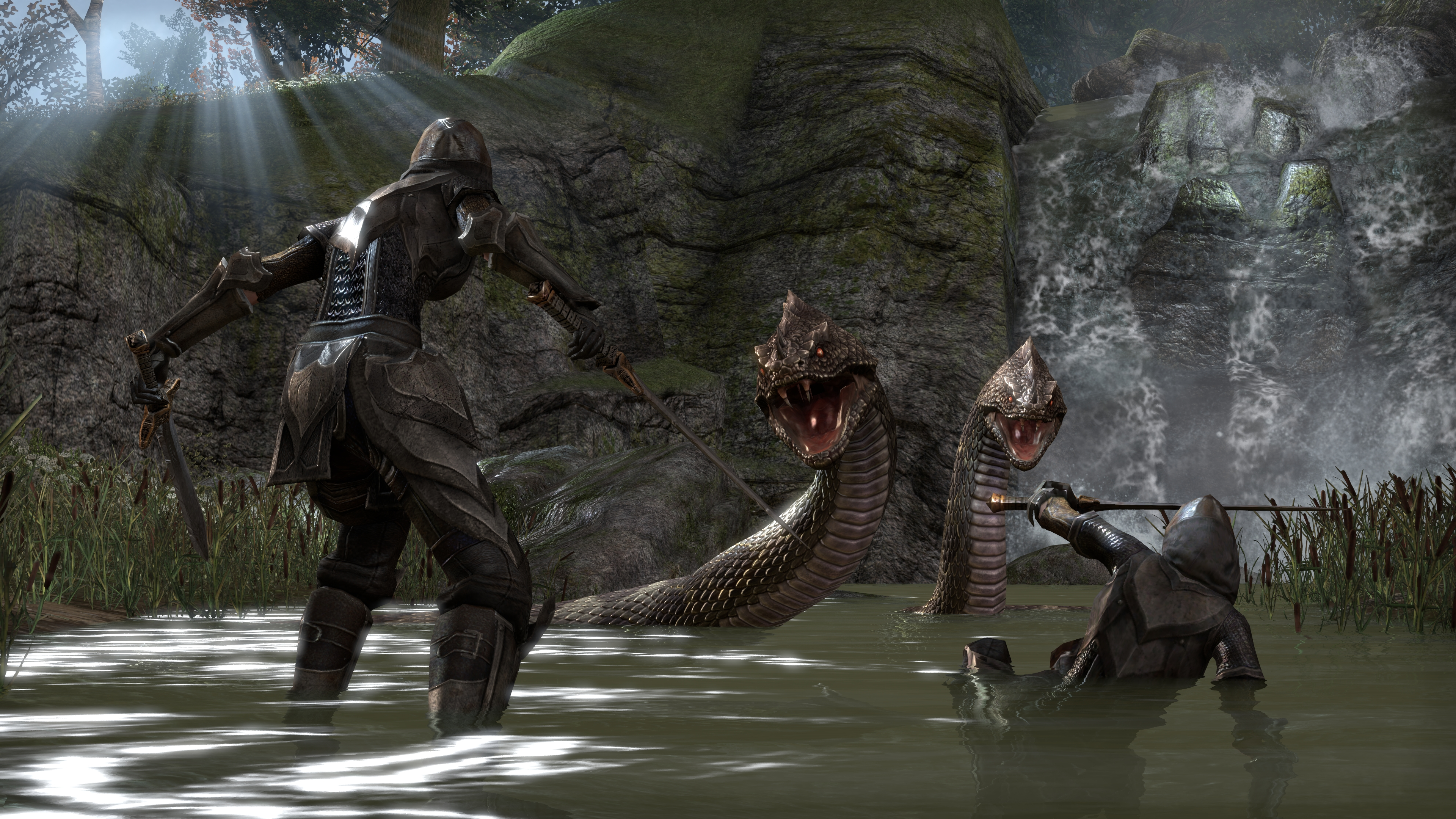 The Elder Scrolls Online Fight With A Snake