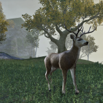 ESO Patch Kills Bambi